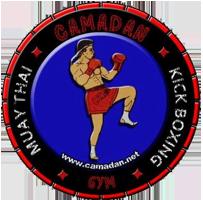 Combat Academy Logo